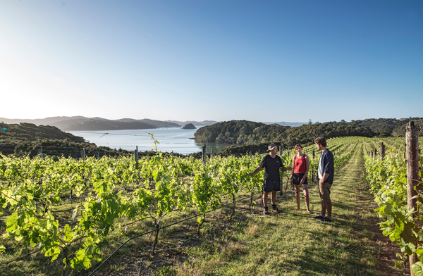 Omata Estate, Bay of Islands