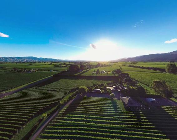 Saint Clair Family Estate Vineyards, Marlborough